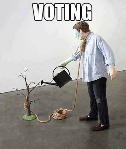 Voter_3bis.jpg