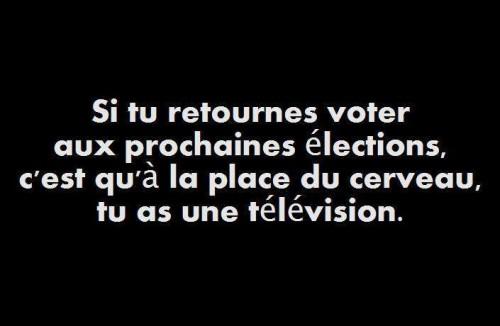 Voter_4.jpg