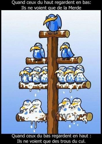 Hierarchie2.jpg